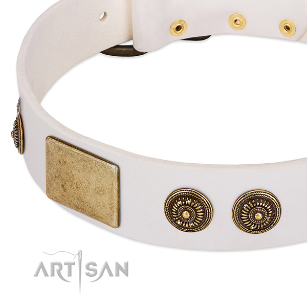 Adjustable dog collar created for your attractive doggie