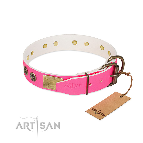 Reliable fittings on genuine leather collar for daily walking your dog