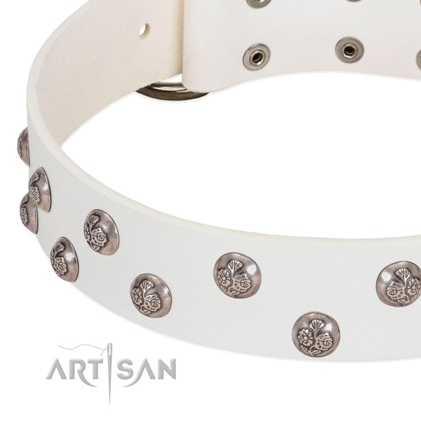 Full grain natural leather dog collar with durable fittings and embellishments