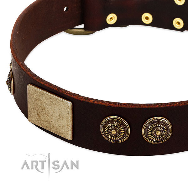 Strong D-ring on leather dog collar for your pet
