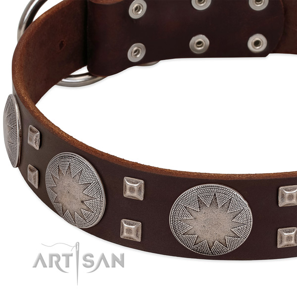 Everyday use full grain natural leather dog collar