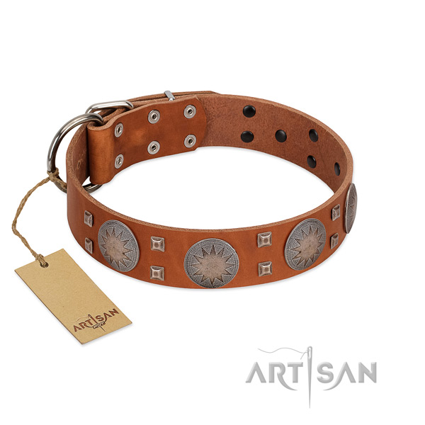 Stylish genuine leather collar for your beautiful pet