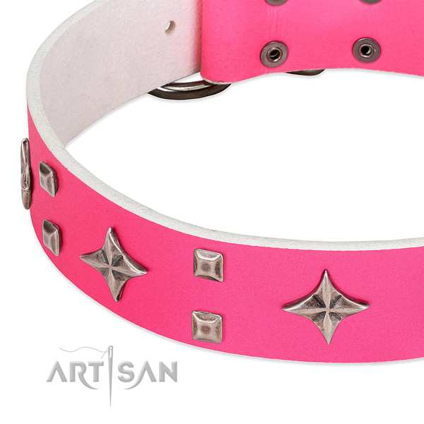 Daily walking high quality full grain genuine leather dog collar with embellishments