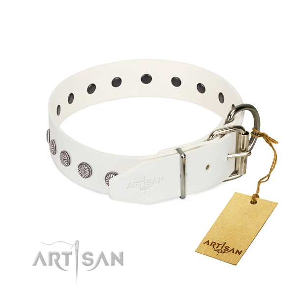 Designer studs on natural leather collar for handy use your dog