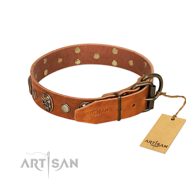 Strong buckle on full grain genuine leather collar for fancy walking your pet
