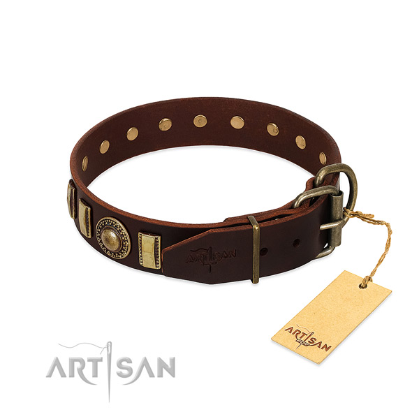 High quality natural leather dog collar with embellishments