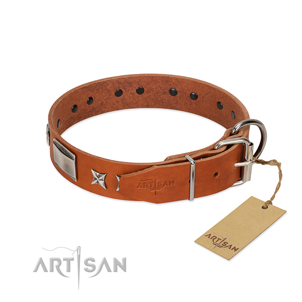 Embellished dog collar of full grain leather