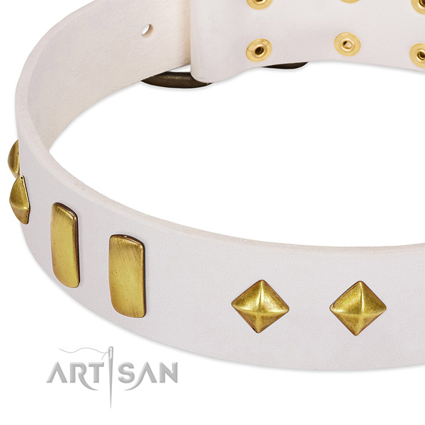 Comfy wearing full grain natural leather dog collar with impressive studs