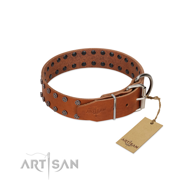 Best quality full grain leather dog collar with adornments for your canine