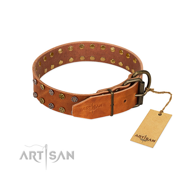 Daily use leather dog collar with amazing decorations
