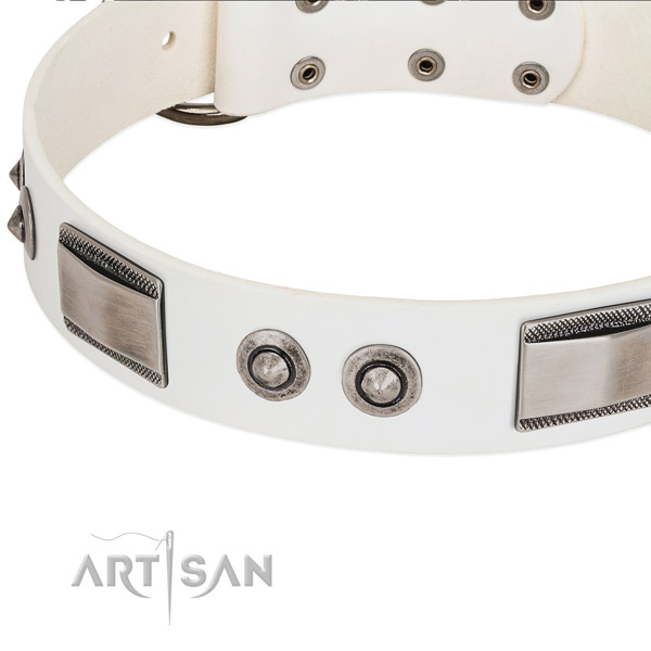 Trendy dog collar of leather with studs