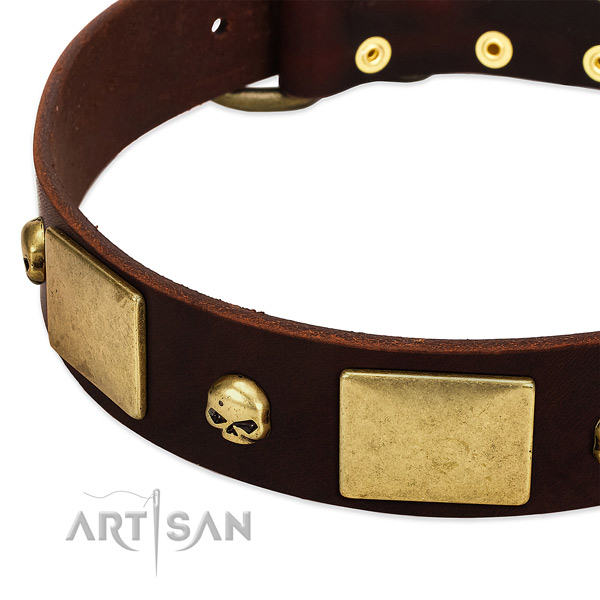 Soft to touch natural leather collar with corrosion proof adornments for your doggie