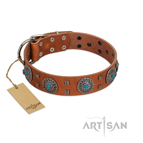 Fancy walking natural leather dog collar with remarkable studs