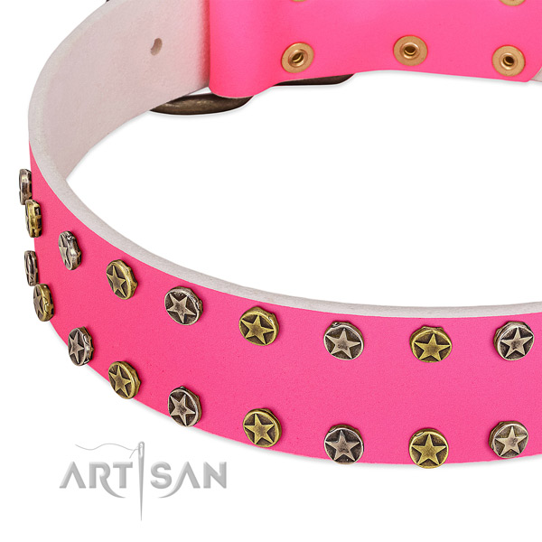 Quality natural leather collar with embellishments for your dog