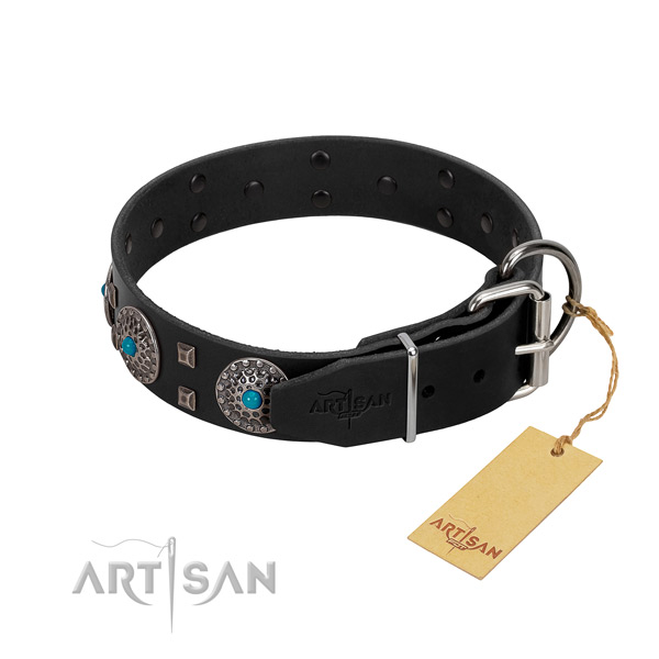 Top rate natural leather dog collar with adornments for everyday walking