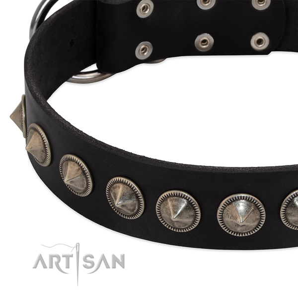 Easy wearing studded natural leather collar for your pet