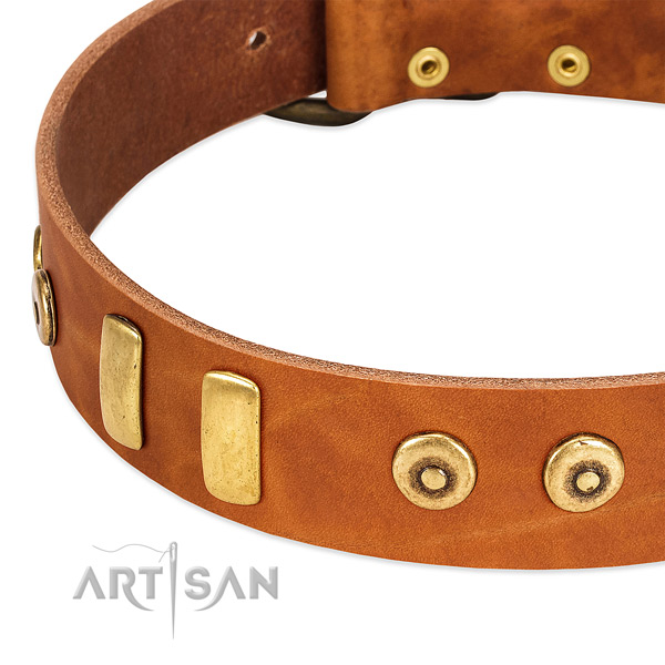 Quality full grain leather collar with incredible adornments for your dog
