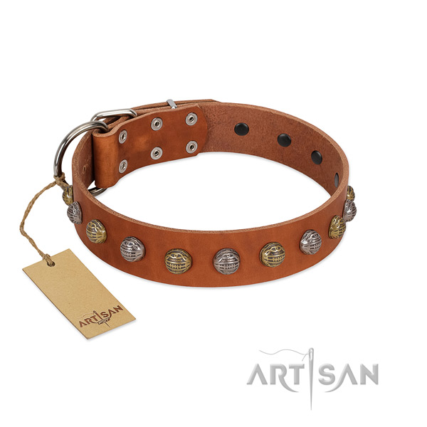 Rust-proof D-ring on leather dog collar for daily walking your pet