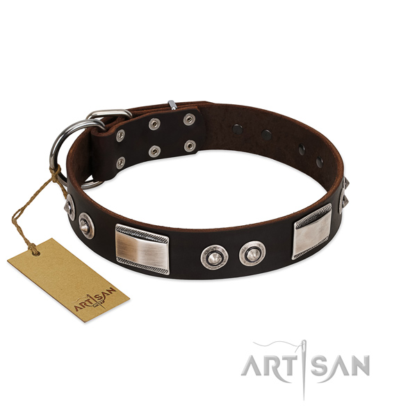 Amazing collar of leather for your pet