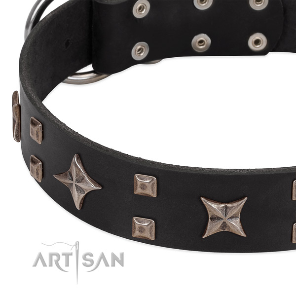 Reliable traditional buckle on genuine leather collar for walking your four-legged friend