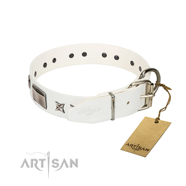 Amazing collar of full grain genuine leather for your handsome doggie
