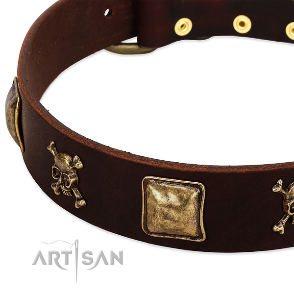 Reliable full grain natural leather dog collar with stunning studs