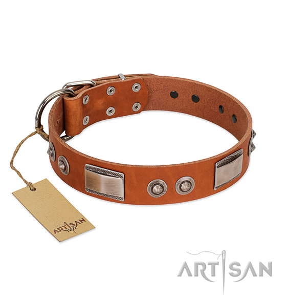 Convenient natural leather collar with embellishments for your doggie