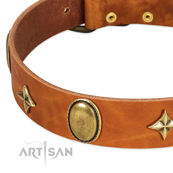 Best quality full grain genuine leather dog collar with rust resistant fittings