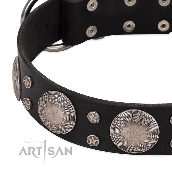 Soft to touch full grain genuine leather dog collar with embellishments for your impressive pet