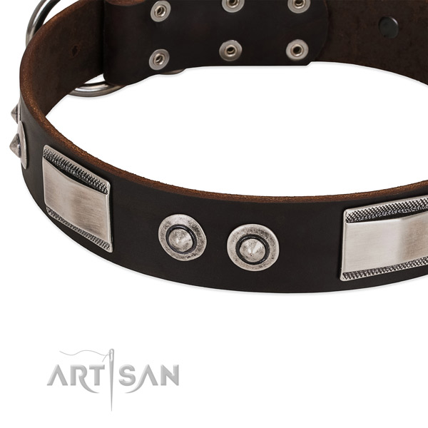 Awesome natural leather collar for your pet