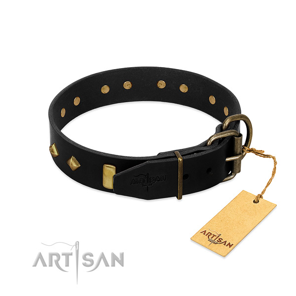 Soft to touch leather dog collar with impressive adornments