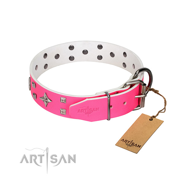 Full grain natural leather dog collar with remarkable studs
