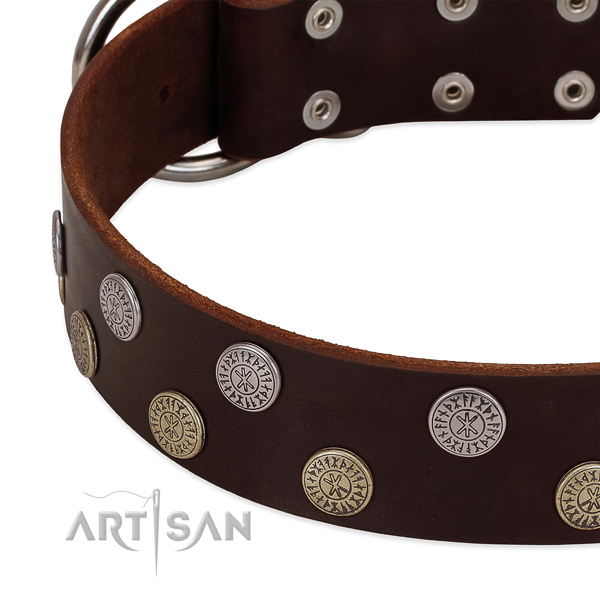Reliable full grain genuine leather dog collar with adornments for your stylish pet