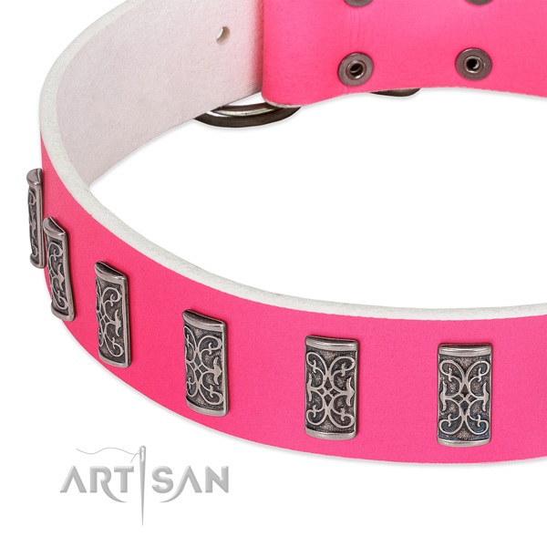 Unique full grain leather collar for your canine stylish walks