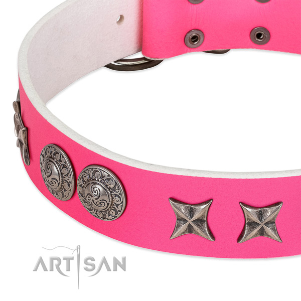 High quality full grain leather dog collar created for your dog