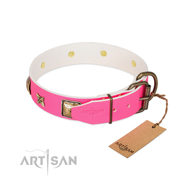 Rust-proof buckle on natural genuine leather collar for daily walking your four-legged friend