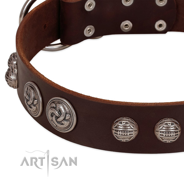 Rust-proof hardware on genuine leather collar for everyday walking your canine