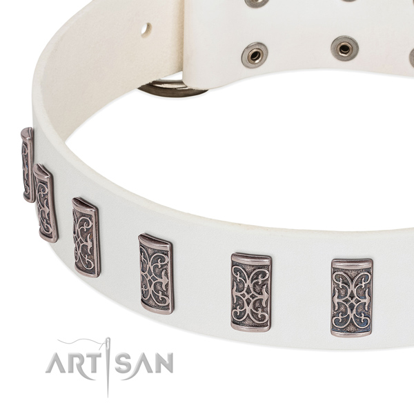 Stunning genuine leather collar for your four-legged friend stylish walking