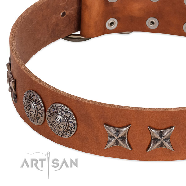 Exquisite genuine leather dog collar with rust resistant traditional buckle
