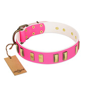 """Rubicund Frill"" FDT Artisan Pink Leather Pitbull Collar with Engraved and Smooth Plates"