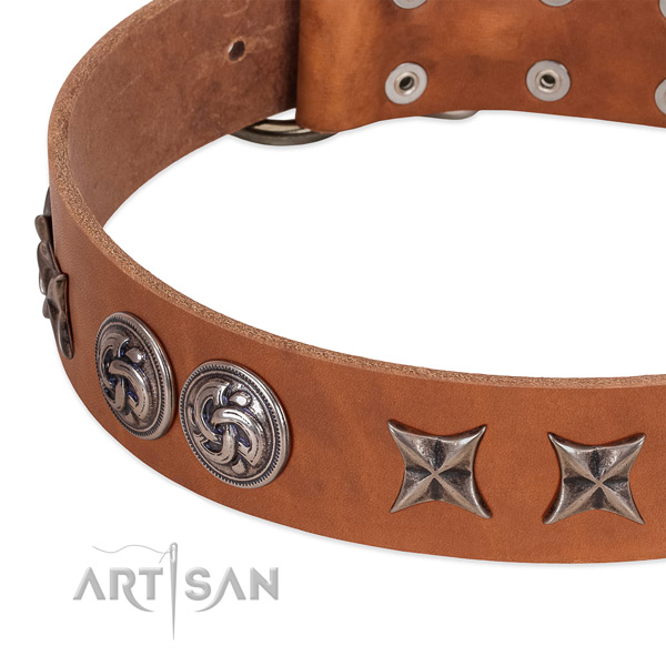 Leather collar with significant embellishments for your doggie