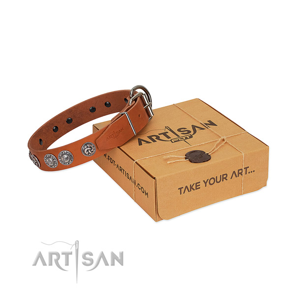 Impressive full grain natural leather collar for your pet walking in style