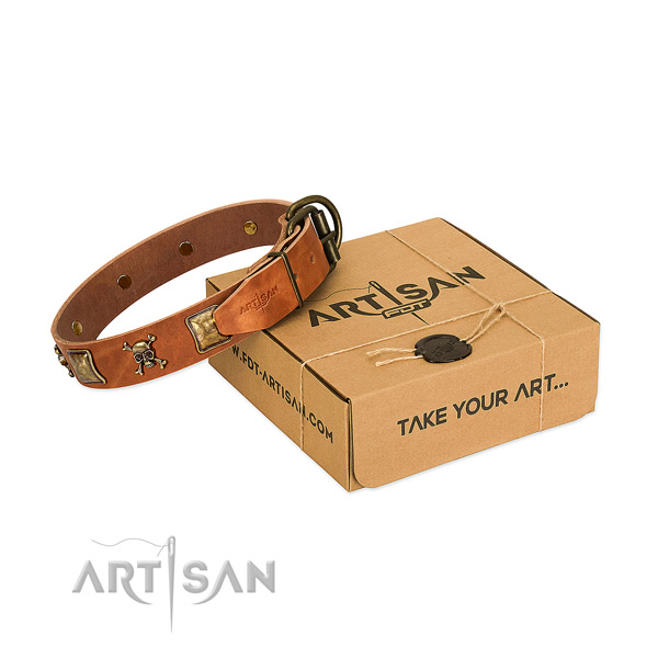 Top notch leather dog collar with rust resistant adornments