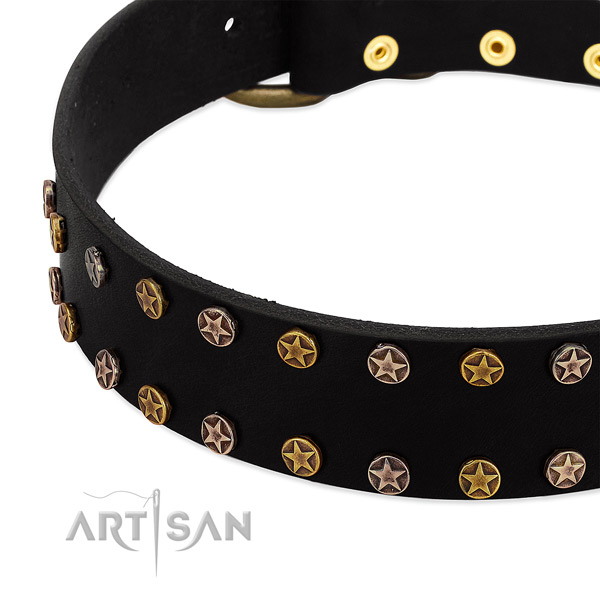 Incredible studs on full grain genuine leather collar for your doggie