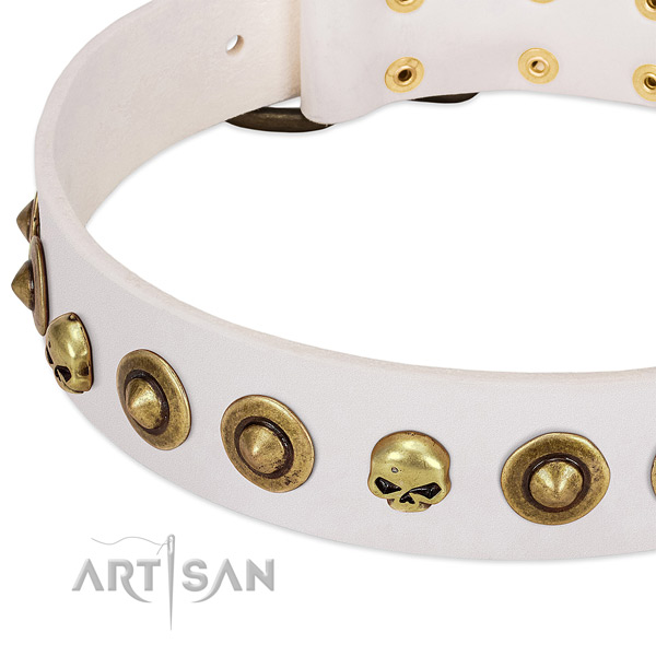 Incredible decorations on full grain leather collar for your doggie