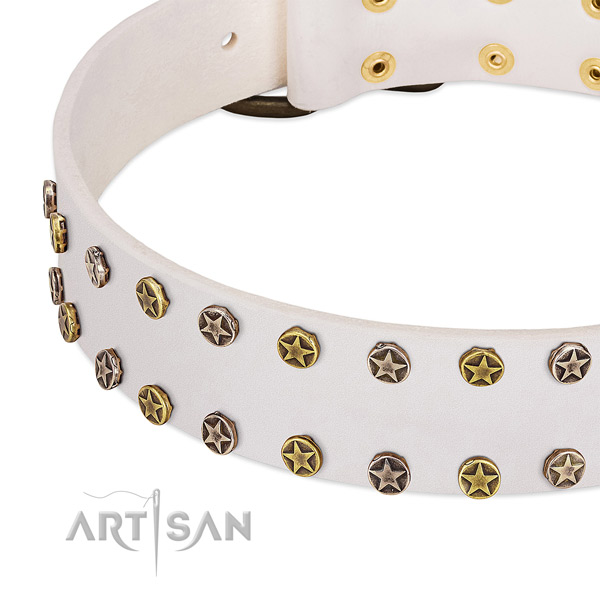 Impressive embellishments on full grain genuine leather collar for your four-legged friend