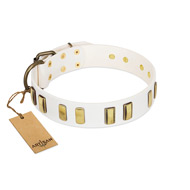 """Glorious Light"" FDT Artisan White Leather Pitbull Collar with Old Bronze-like Plates"