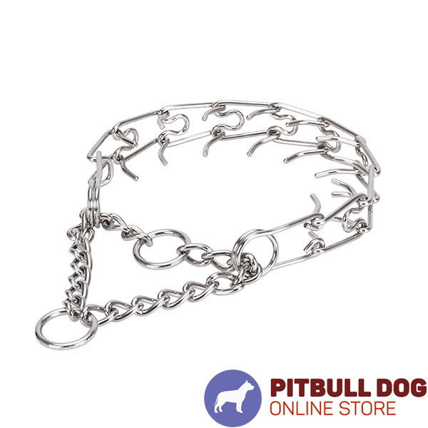 Prong collar of rust-proof stainless steel for poorly behaved dogs