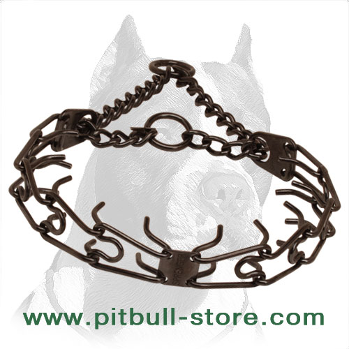 Corrosion resistant black stainless steel pinch collar for poorly behaved dogs