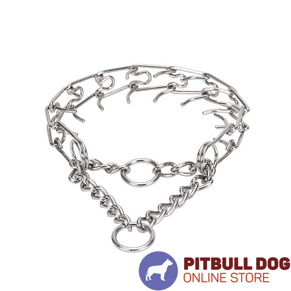 Corrosion resistant stainless steel pinch collar for poorly behaved dogs
